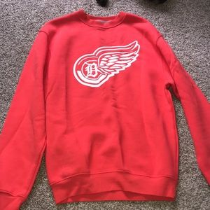 Women's Detroit Tigers and Red Wings hoodie